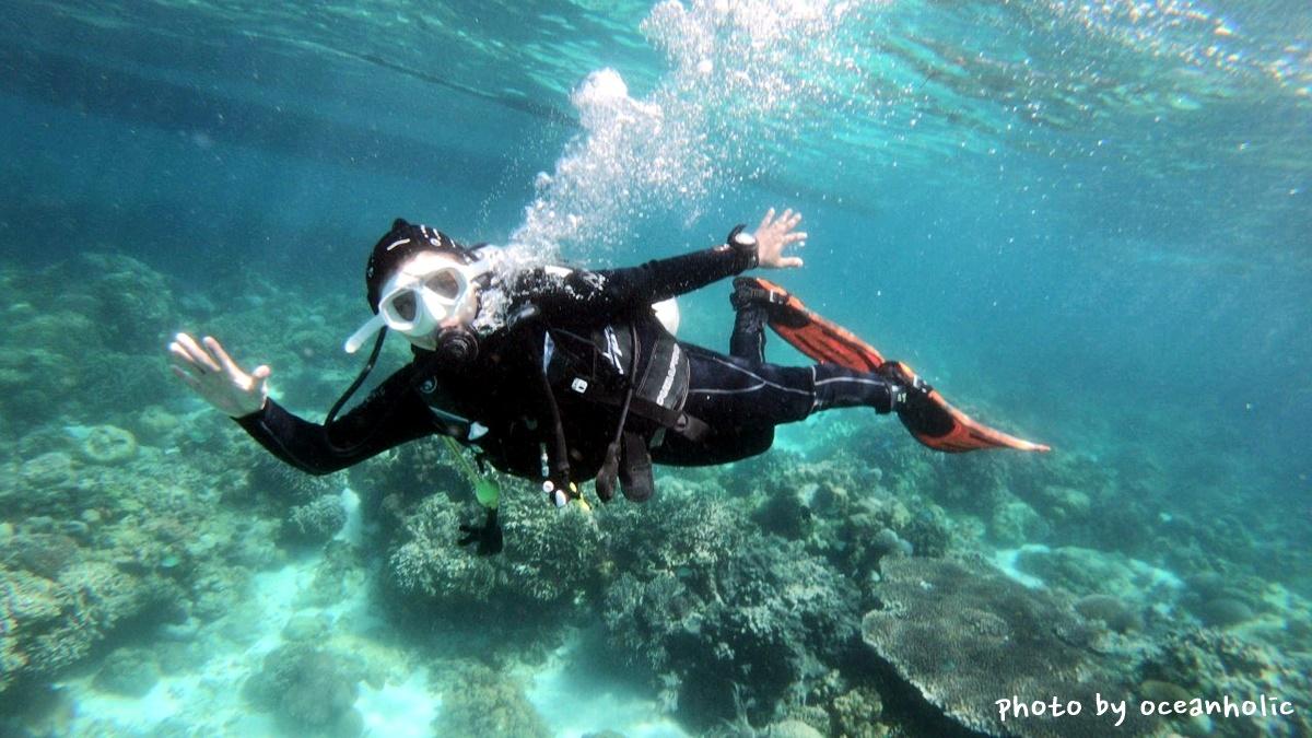 oceanholic2.jpg